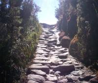 Aventura en el Camino Inca