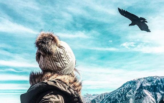El vuelo de los cóndores en un tour de dos días por el Cañón del Colca
