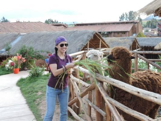 Cuarta Razón: Visitar el Valle Sagrado del Cusco u otros destinos: